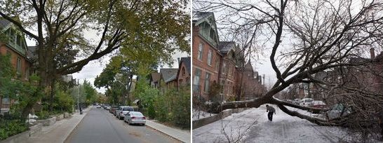 Same Scene, From The Back. Before and After Photos of the Toronto Ice Storm