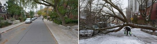 Toronto Ice Storm - That Poor Tree and Car - Slightly different angle before